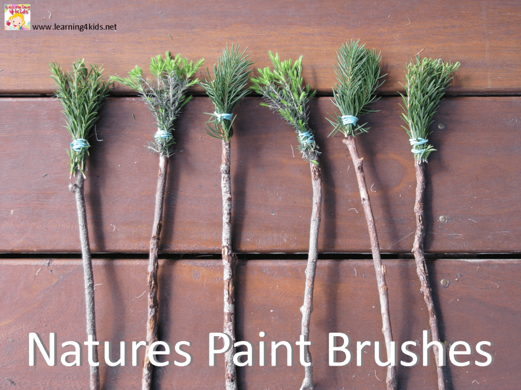Textured Painting with Natures Paint Brushes Learning 4 Kids