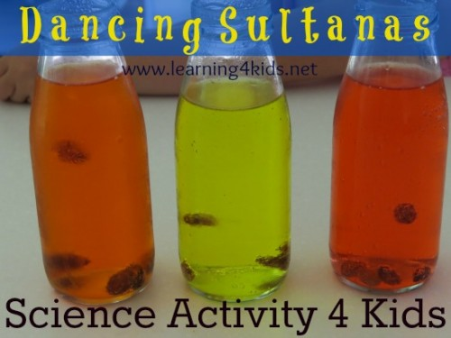 Science Fun DAncing Sultanas