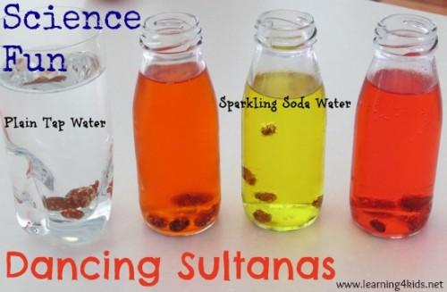 Science Fun - Dancing Sultanas