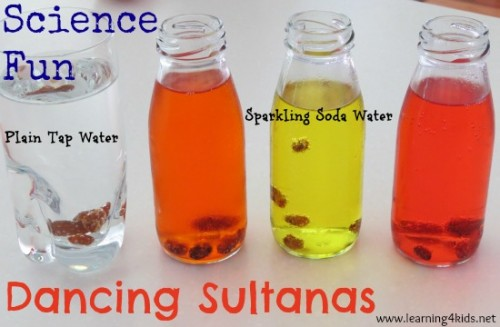 Science Fun - Dancing Sultanas