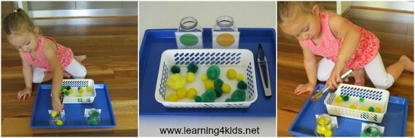 Learning Trays Collage a