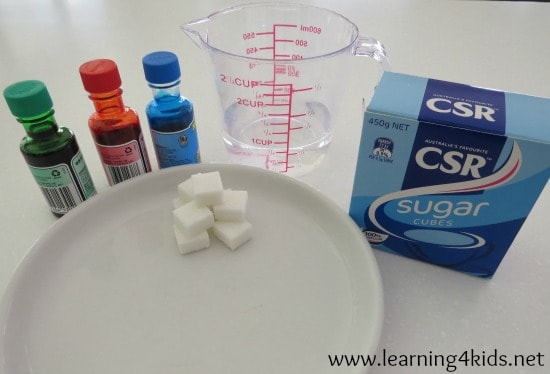 Simple Abosrption Science Experiment for Kids