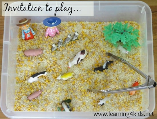Invitation to play sensory hide and seek
