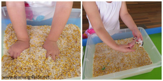 Sensory Games for Kids