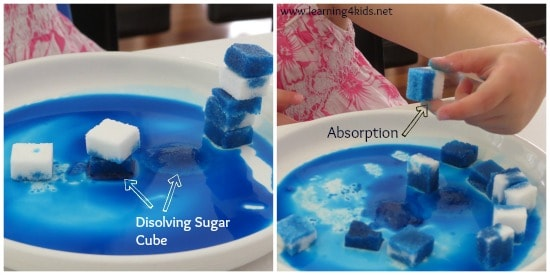 Simple and easy to do science activities for kids