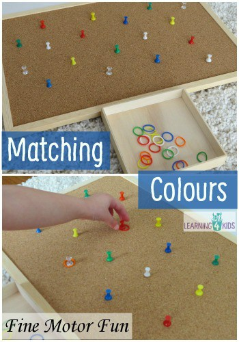 Motor and Colour Activity