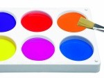 Buy Blank Palette Online