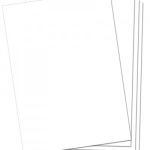 Large White Cardboard Pack of 20
