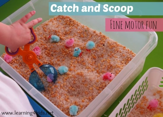 Catch And Scoop Fine Motor Activity Learning 4 Kids