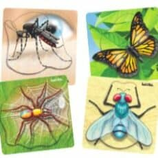 Insect Tray Puzzles Set of 4