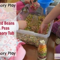 Mixed Beans and Peas Sensory Tub
