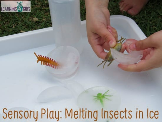 Sensory Play - Melting Insects in Ice