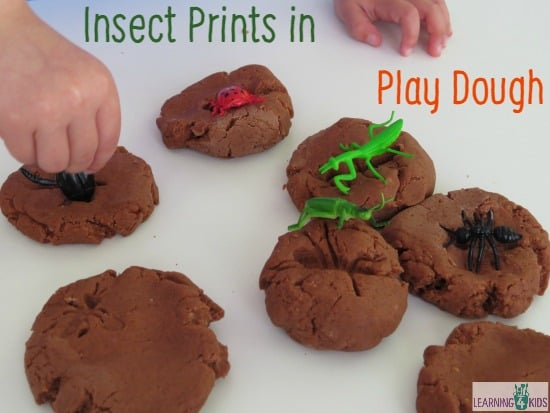 Insects Activities - Insect Prints in Play Dough