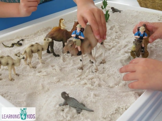 Pretend Play Small World Desert