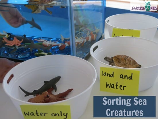 Sorting Sea Creatures - Underwater Zoo