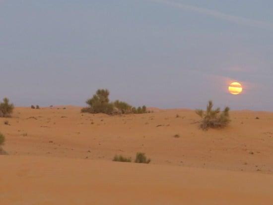 Sunset in the Arabian Desert Dubai