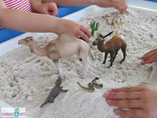 small world desert play