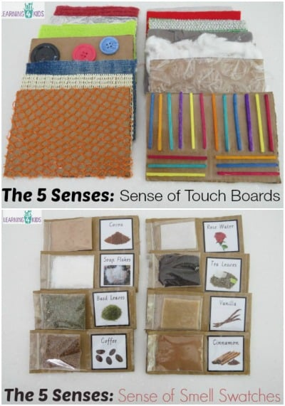 Sense of Touch and Sense of Smell Activities