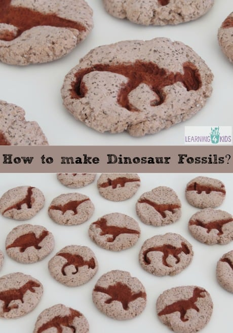 how to make dinosaur fossils learning 4 kids