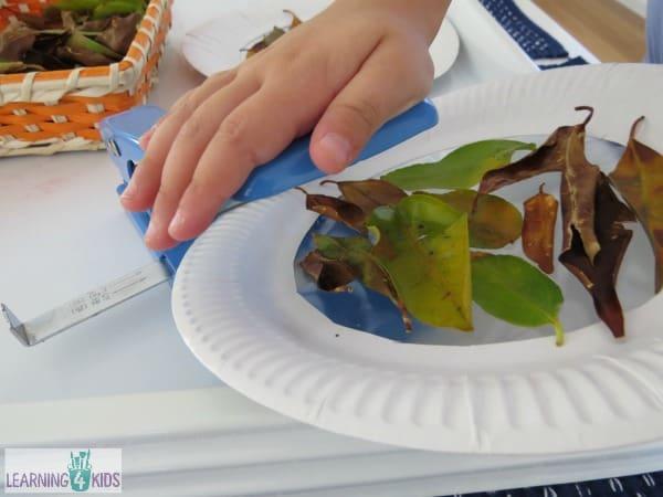 Paper Plate Autumn Craft