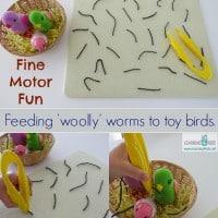 Fine motor activity for kids - pretnd feeding 'woolly' (yarn) worms to toy birds.
