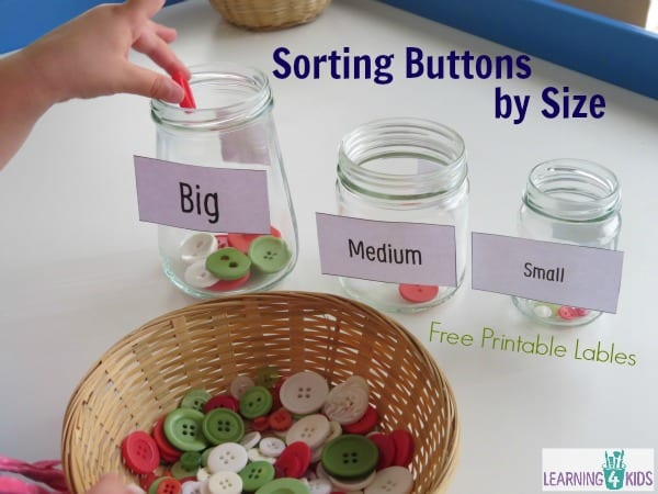 Sorting buttons by size - great fine motor and measurement activity